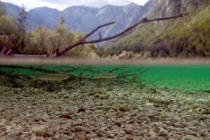 kovoorn, Bohinjsko jezero,