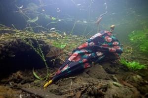 gevonden paraplu, gevonden voorwerpen, afval, onderwaterfotografe